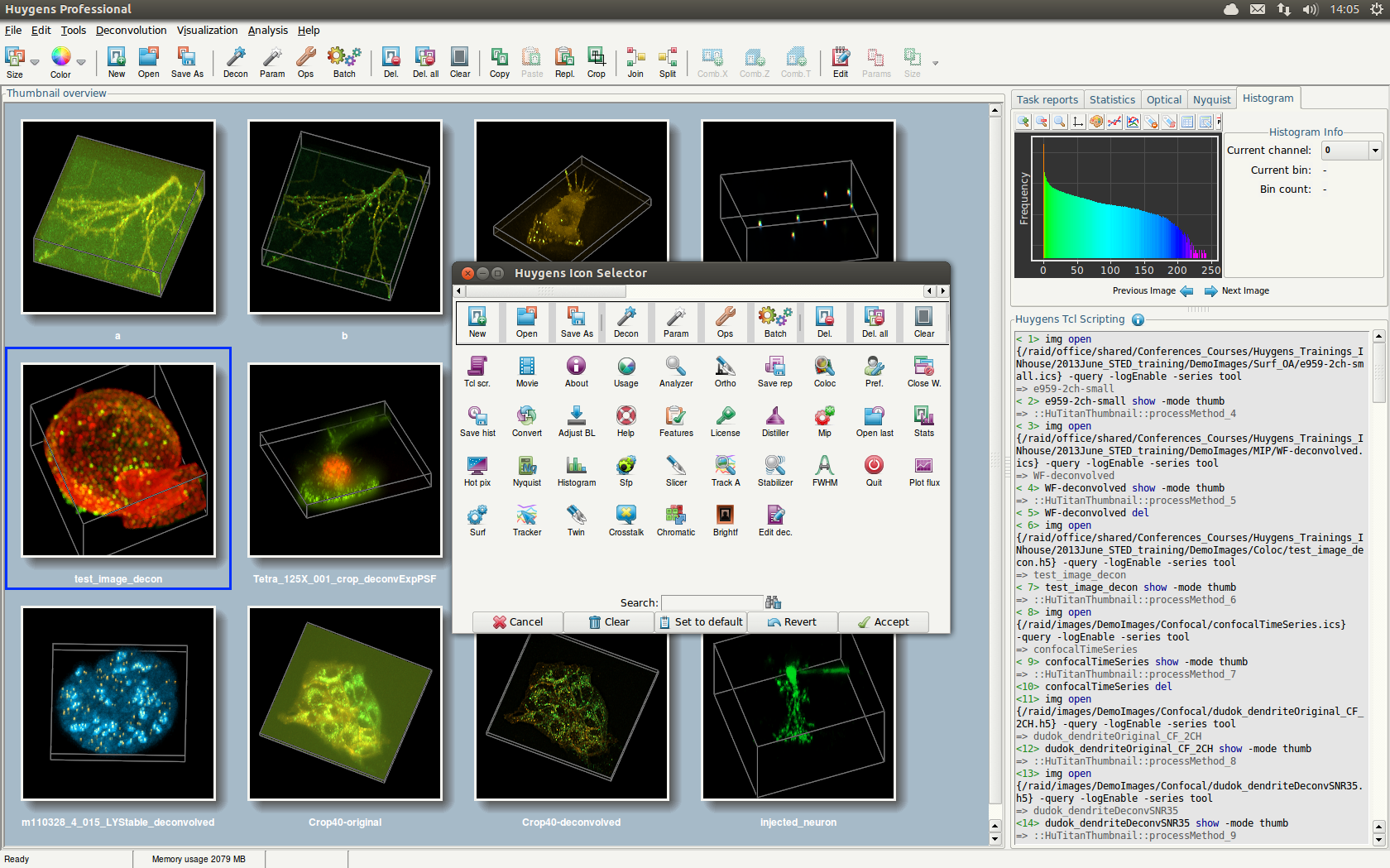 Huygens Professional with new MIP thumbnails and Icon Selector