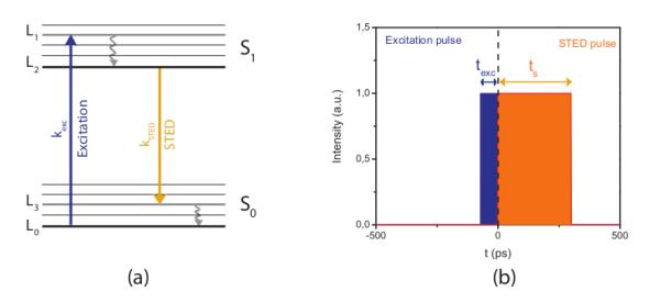 Gatedsted scientific volume imaging a jablonski diagram illustrating stimulated emission the fluorophore is pumped ccuart Images