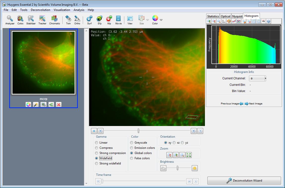 WhatsNewArchive   Scientific Volume Imaging
